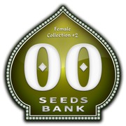 00 SEEDS FEMALE COLLECTION II (6 UNIDS)