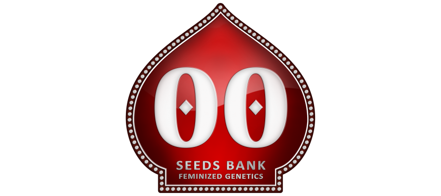 00 SEEDS FEMALE COLLECTION I (6 UNIDS)